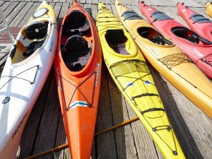 Enjoy a fun day of kayaking with family in the town of Corvallis.